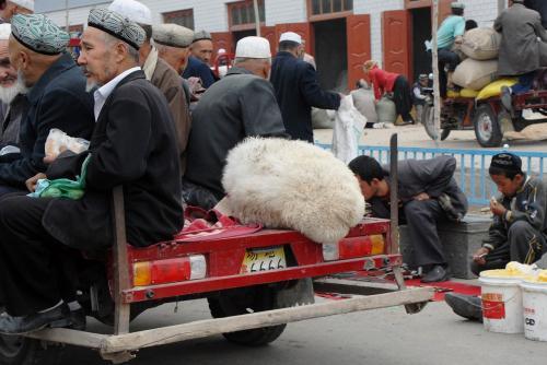 バイクリヤカータクシーに乗るのは、人間様だけじゃないんですよ〜♪<br /><br />羊ちゃんのモコモコおケツ♪