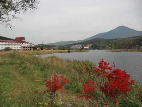 名古屋近郊の自宅を9時頃出発。中央高速道路を快適に飛ばし、お昼前には白樺湖(写真)に着く。湖畔のどうだんツツジが真っ赤に色づく。