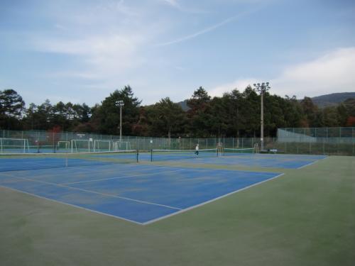 久しぶりにテニスに汗を流す。私は若い時、テニス(andスキー)に夢中になり、リゾートテニスが無上の楽しみであった。しかし、今はテニス(andスキー)の情熱が去り、コートに立っても感激がない。