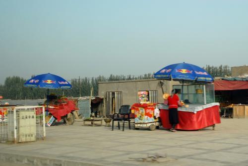 では、今度こそ人口80.4万人もの巨大村、莎車とお別れです!<br /><br />維吾爾人は76.9万人、農業従事者68.5万人と言う、維吾爾人占有率96%の農業都市よ!<br />ホッシ!ヤルカン!!<br /><br />尚、莎車の人口や農業など、町の様子が詳しく載っている頁はこちら!<br />http://www.shache.gov.cn/ReadNews.asp?NewsID=3825<br />莎車県政府のオフィシャルサイト(官方网)です。