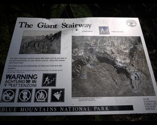 ブルー・マウンテンズは構造的にグレーター・シドニー盆地の一部です。シドニー盆地は過去3億年にできた堆積岩の層から成り、ブルー・マウンテンズもこの間、同盆地の西側を突き上げる地殻変動により形成されました。<br /><br />Dardanelles Pass, Federal Passは、この地域の谷底にあたる部分で、堆積した土壌に温帯雨林を形成している。<br />