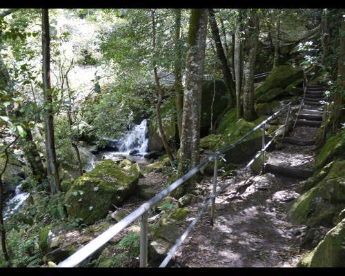 Cooks Crossing, 苔の付いた大きな岩、小さな滝が流れています。