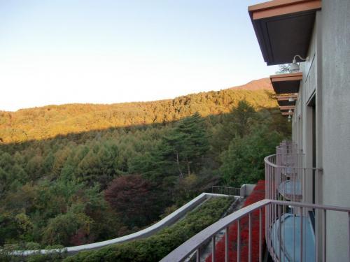 私の部屋のバルコニーからの眺め(写真)も悪くはない。朝風呂に行くか、朝の散歩にするか、それともアルプスを眺めながら部屋でモーニングコーヒーを飲むか?