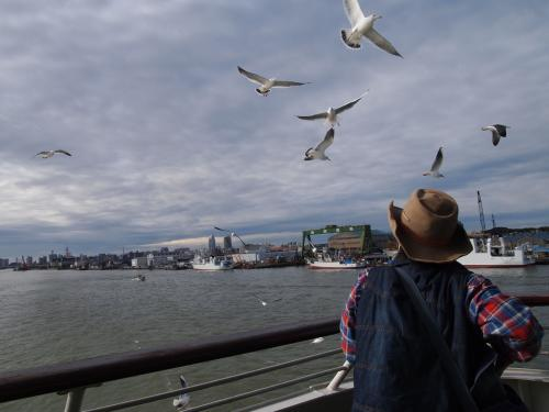 新潟港からカーフェリーで両津港に向かいます。<br />佐渡汽船にはお約束のようについてくるかもめの集団。<br />この日は家から食パン持参で乗船しました。