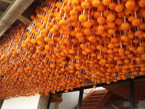 両津港からバスの本線(両津−相川)12:10発に乗って金井で途中下車。<br />あちこちの軒で柿がすだれのように干してありました。<br />