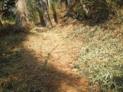 要害山への登山道