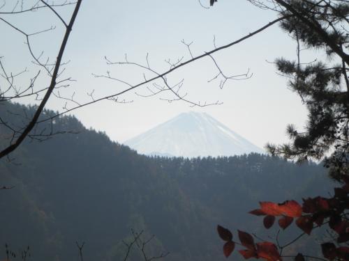 要害山頂上付近から見る富士山
