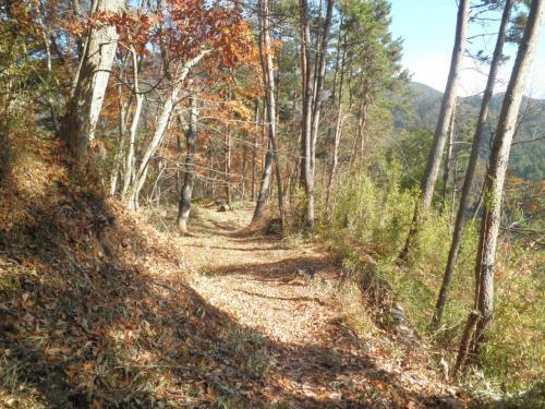 要害山頂上附近、岩堂峠方面への登山道