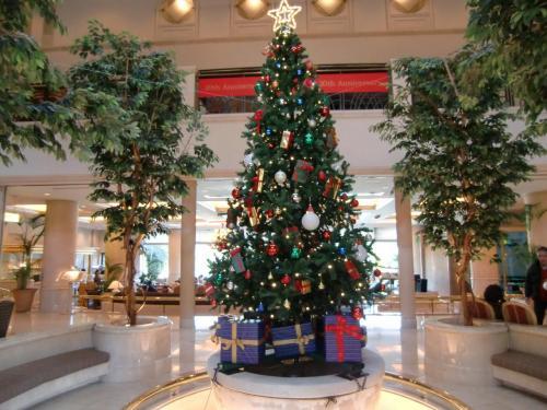 今日は寒い。シャトルバスに乗ってアネックス棟に行く。ロビーに飾られた大きなクリスマスツリー(写真)。