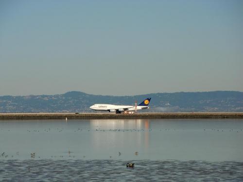 ラグーンの中に空港の滑走路があり、目の前でルフトハンザ航空のB-747(写真)が着陸する。