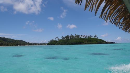 スノーケル満喫した後は、無人島のコロミリ島へ向かいます。<br /><br />それにしても、どこを撮っても絵葉書の世界です。