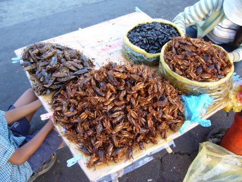 虫の佃煮。