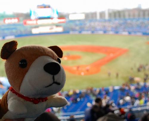 野球は、楽しいねぇ。<br /><br />さて、安楽亭行くわん!