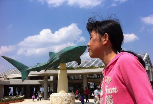 第11日)美ら海水族館へ