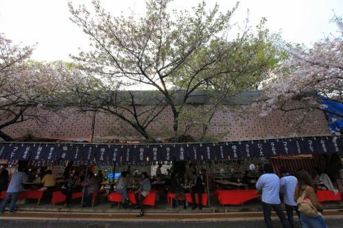 造幣局 桜の通り抜け 〜屋台へ行こう〜<br /><br />こちら、屋根付きの座敷席。<br />何席あるのでしょうか、敷地内でも最大規模のお店です。<br />