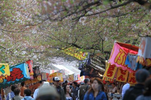 造幣局 桜の通り抜け 〜屋台へ行こう〜<br /><br />屋台ばかりに気をとられないで、桜のトンネルにも注目して欲しい。<br />