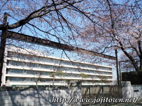 ・2011/4/5<br />桜が綺麗ですね〜<br />我が母校の四中校門の桜も入学式を心待ちにしているようでした。<br /><br />