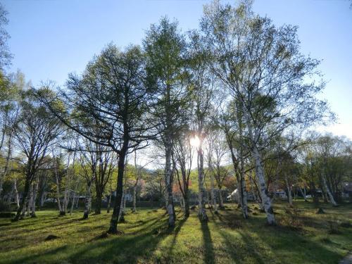 太陽(写真)は既に昇っている。今日の金環日食は期待できそうだ。