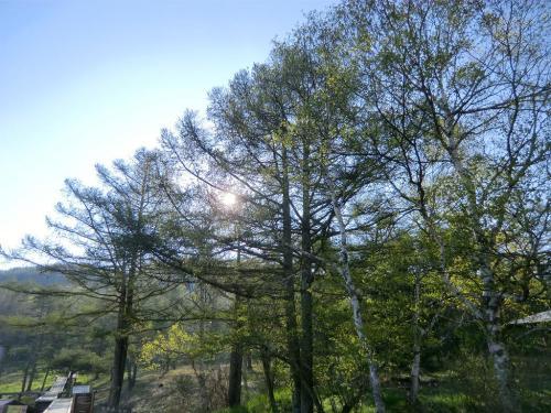 最初は見晴らしのいい「蓼科第二牧場」に行こうかな?と思ったが、太陽は既に高く女神湖周辺(写真)でもしっかり観察できる。<br />