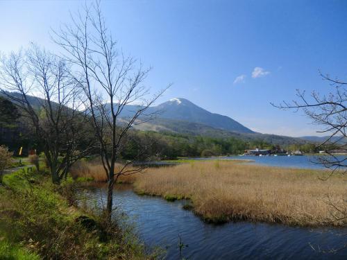 朝の女神湖と蓼科山(写真)。いつもの構図であるがやはり絵になる。