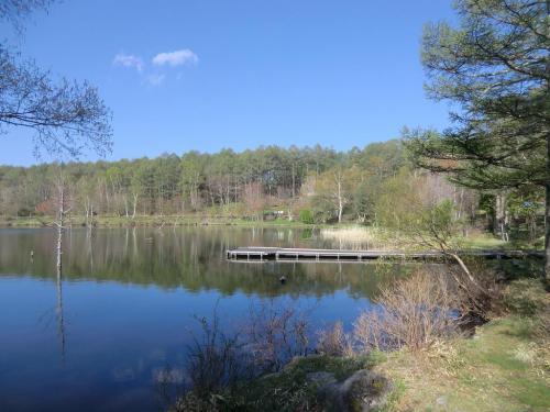 結局、湖に張り出した桟橋?(写真)の上で観察することにする。<br />