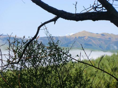 早朝、バルコニーに出てみると谷間に霧(写真)がかかっている。これまで一度も見たことのない風景に朝から感動する。<br />