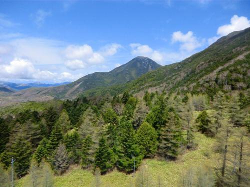 ロープウェイは標高差466mを約7分で駆け上がる。進行方向左側に蓼科山(写真)が見える。<br />
