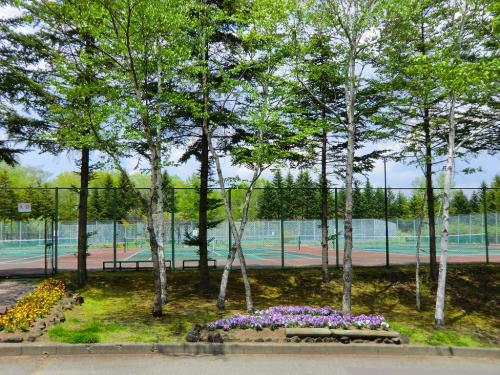広いテニスコート(写真)。新緑の木々が誠に気持ちがいい。夏の高原でのテニスは最高であろう。