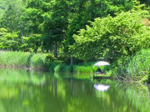 今日は月曜日、観光客は1人もいない。湖畔では釣り人(写真)が1人パラソルを開いて釣り糸をたれているのみ。実にのどかな風景で何も奇跡は起こらない。<br />