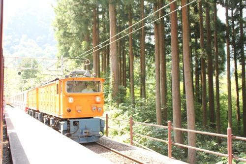 トロッコ列車は単線のため、途中の駅ですれ違いのため何度か停車します。<br />下車はできません。