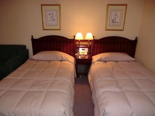 本日の部屋は3階の302号室。洋室ツインルーム(写真)に入る。客室の広さは約28?あり、夫婦2人で使うには丁度いい広さである。