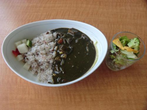 妻は「野菜の竹炭カレー、サラダ付」(写真:1000円)を注文。腹が減っているので何を食べてもうまい。カレーの色が黒いが、竹炭の粉末が入っているという。解毒効果あり?<br />