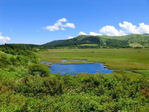 歩きはじめは高台になっており「八島ヶ池と八島湿原」(写真)の全貌が見える。 <br />