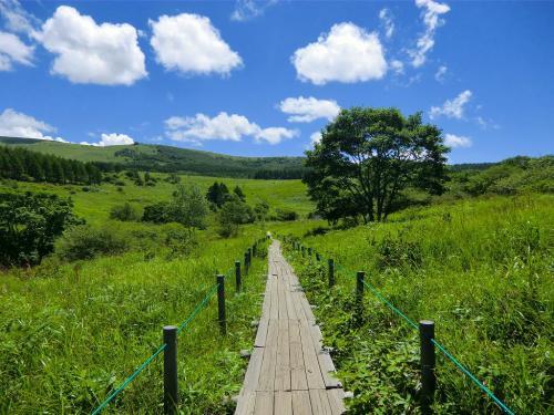 湿原から離れ「旧御射山(もとみさやま)」方面(写真)に歩く。この先、ヒュッテ御射山がある。(喫茶営業中)<br />