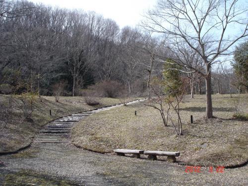 駐車場付近の「小鳥の森」の風景です。