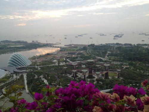 9月10日(月) マリーナベイサンズ滞在<br /><br />朝7時、部屋のベランダからの眺め。部屋は外海向きで、遠くには船がいっぱい。眼下には最近オープンした植物園が見える。<br />このホテル、上層階でもベランダに出ることができる。うれしいような、危ないような。
