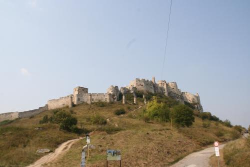 駐車場に車を停め、城まで登る。