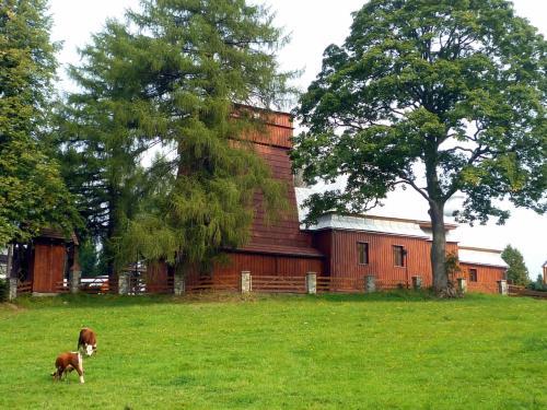 「東欧周遊ドライブ その2」からの続き (http://4travel.jp/traveler/earth/album/10707672/)<br /><br />モフナチュカ・ニジナの教会。本当にのどかな村。