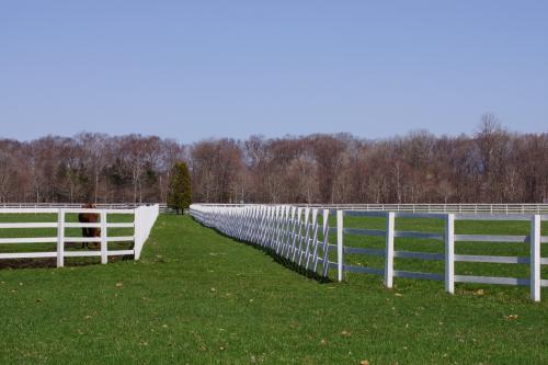 現役時代に大きな成果をだしたお馬さん達。<br />頑張った分だけ贅沢な環境で過ごせるのねぇー。<br /><br />一頭一頭に個室ならぬ個放牧場が割り当てられていました。