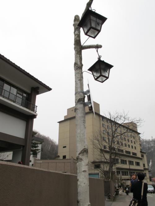 帰り道によく見ると、街灯が白樺風になっていました。
