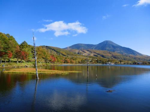紅葉の「女神湖と蓼科山」(写真)。女神湖は私を決して裏切らない。もう死ぬまで愛しちゃおうか?<br />