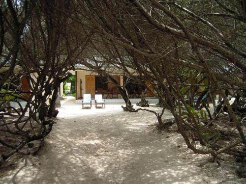 木のアーチを通り過ぎるとビーチ。