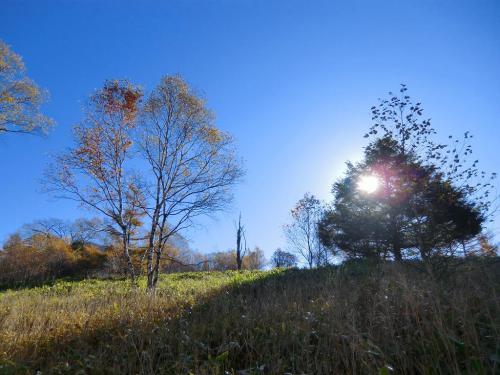 天に抜けるような青い空(写真)。深い呼吸をし、自分の体(体調)に耳を傾けながら一歩一歩進む。