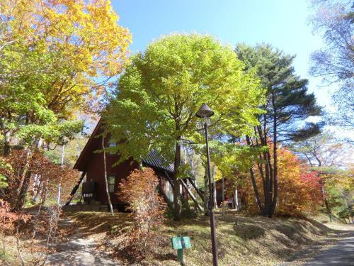 コテージからの小道は突きあたりになり右方向に下っているが、私はそのまま直進する。ここは「相模原市民・たてしな自然の村」(写真:以下参照)になっている。<br />http://www.tateshina-shizen.jp/