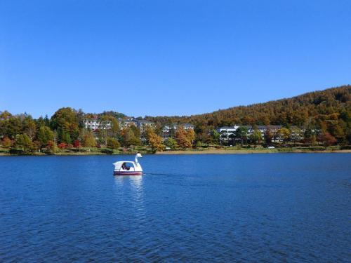 女神湖に浮かぶ白鳥とホテルアンビエント蓼科(写真)<br />
