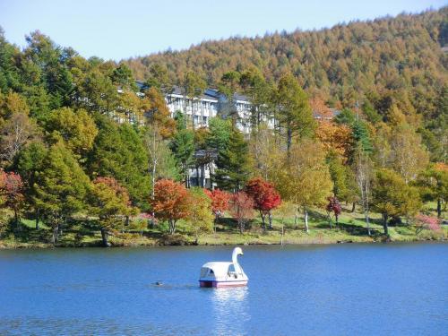 女神湖に浮かぶ白鳥とホテルアンビエント蓼科(アップ写真)<br />