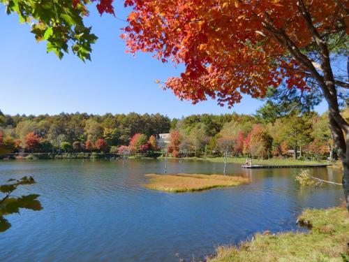紅葉の女神湖畔(写真)