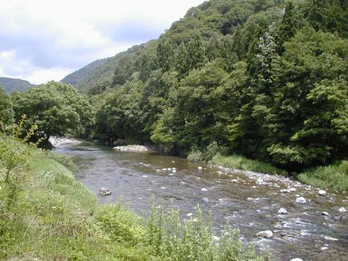 澄んだ川も流れています。