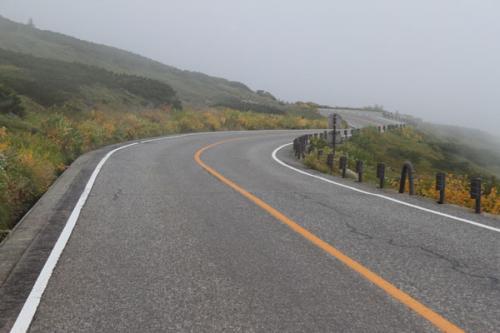 視界は悪く、見えるのは道と霧だけ。