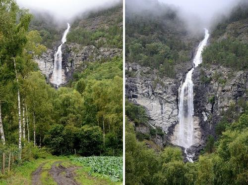 今日の最初の目的地のボルグン村へは、フロムからE16号線をアウルラン→ラールダール方面へ北上して行くだけでいいんですが、景色のいい所では脇道にも入ってみます。<br /><br />白樺林の向こうに大きい滝が見えるね、と近寄って行ってみた。<br /><br />こんなに大きい滝だと名前が付いていてもよさそうなのに、SUR SHANGHAIたちが持って行った地図には名前無し。<br />フィヨルドの渓谷にはそれこそ無数の滝があるから、特筆すべき滝じゃないと名前は付けてもらえないのかも。<br /><br />ここから先は車は行けないね。<br />個人所有の土地の畑や林みたいだし、滝壺まで行くのは断念。
